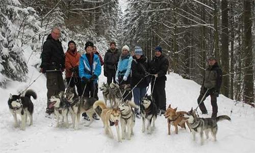 husky-events-schmallenberg-sauerland
